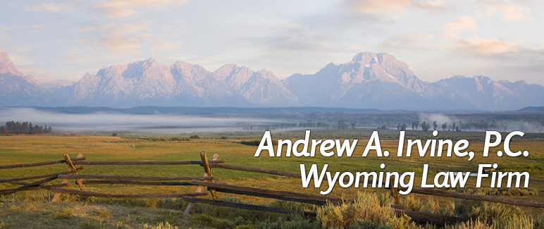 Adult adoption law wyoming